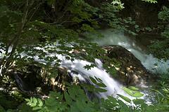 water4.jpg